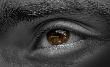 眼球の画像