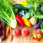 ビタミンEの効能が健康維持につながります!